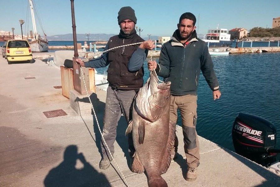 Σύρος: Δύο ψαράδες έπιασαν με καλάμι γιγάντια σφυρίδα 63 κιλών