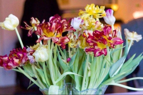 Το κόλπο με την βότκα για να μην μαραθούν τα λουλούδια στο βάζο σας