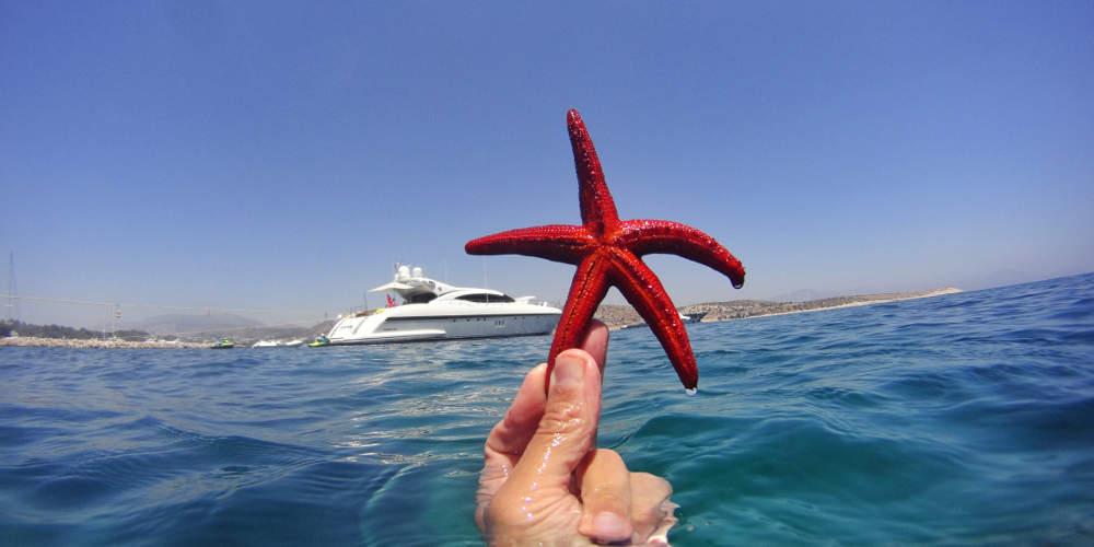 Οι 5 πιο δημοφιλείς τουριστικοί προορισμοί στην Ελλάδα!