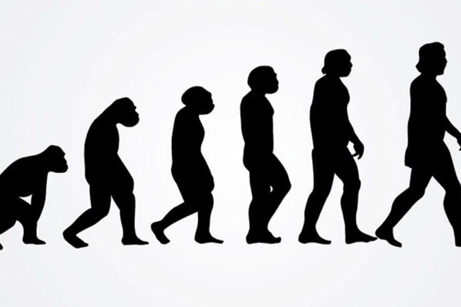 Πως θα έμοιαζε το ανθρώπινο σώμα χωρίς τα «λάθη» της εξέλιξης