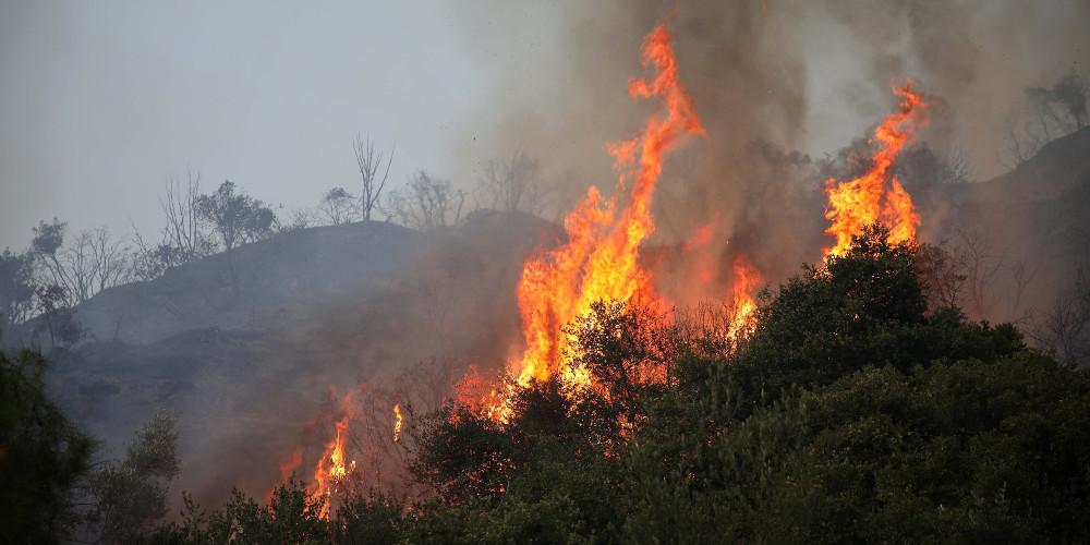 Συναγερμός για πυρκαγιά στην Βοιωτία