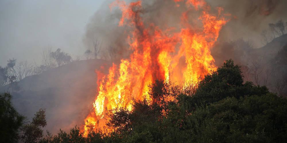 Εκκενώθηκε ξενοδοχείο από την μεγάλη φωτιά στην Αλόννησο – Για εμπρησμό μιλά ο Δήμαρχος
