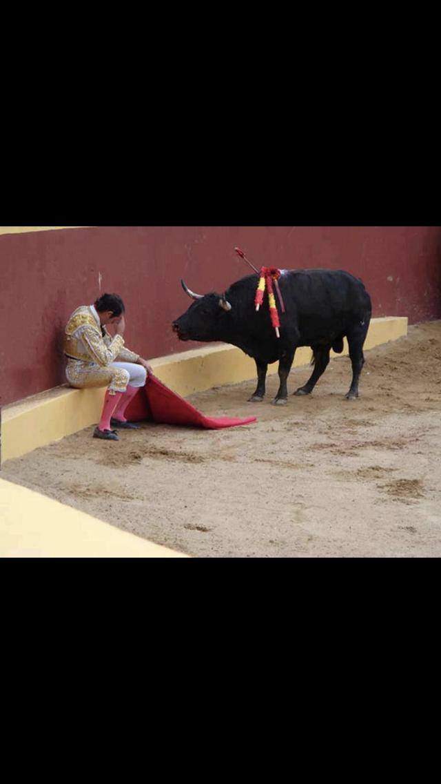Ο ταύρος και ο Αλβάρο Μουνέρα…
