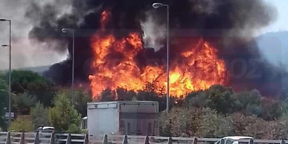 Εικόνες από την μεγάλη φωτιά στο Μενίδι – Επιχειρούν 20 πυροσβέστες
