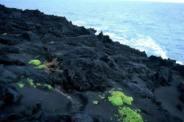 Το αυστηρώς απαγορευμένο νησί που υπάρχει από το 1963