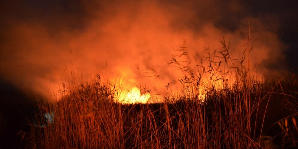 Σε εξέλιξη η φωτιά στην περιοχή του Αράξου, στην δυτική Αχαΐα