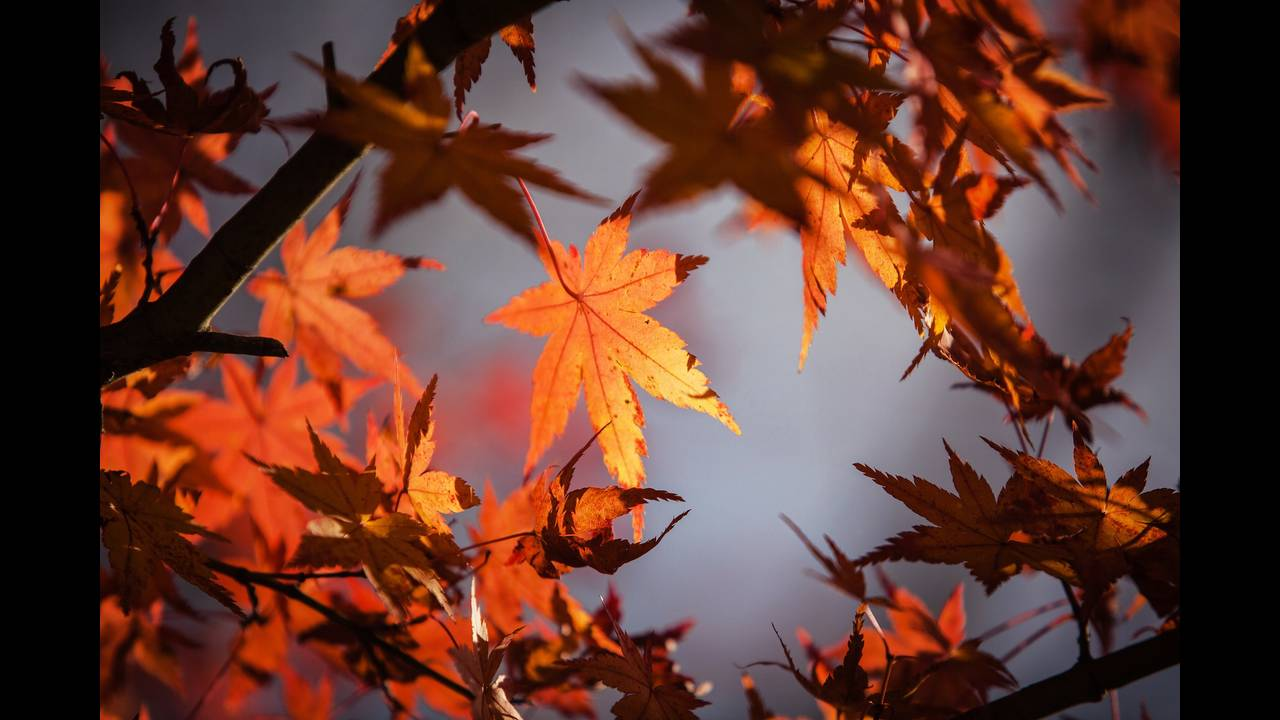 Φθινοπωρινή ισημερία: Γιατί δεν είναι ακριβώς ίση η διάρκεια μέρας και νύχτας