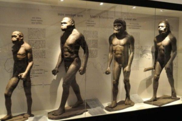 Επιστήμονες καταρρίπτουν την θεωρία του Δαρβίνου: Όλοι προερχόμαστε από δύο μόνο ανθρώπους