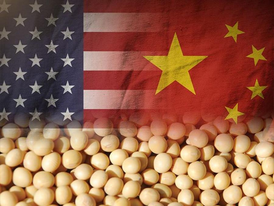 Αποδίδει καρπούς η εμπορική εκεχειρία ΗΠΑ – Κίνας – Το Πεκίνο αγόρασε 500.000 τόνους αμερικανικής σόγιας