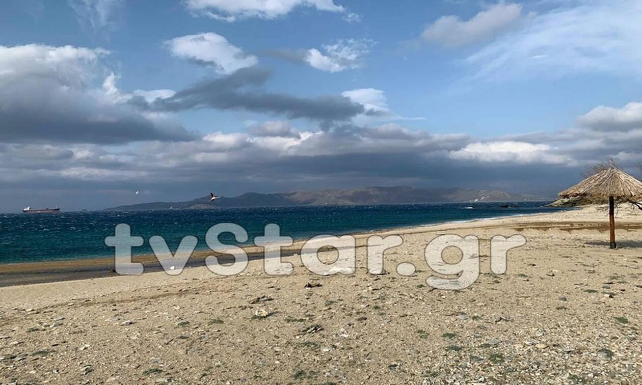 Κάρυστος: Βρήκαν σε παραλία ΑΥΤΟ το πλάσμα (pics)
