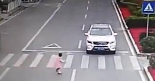 Περνάει τη διάβαση πεζών και σταματάει μπροστά στο αυτοκίνητο – Η κίνηση που γονάτισε το ίντερνετ