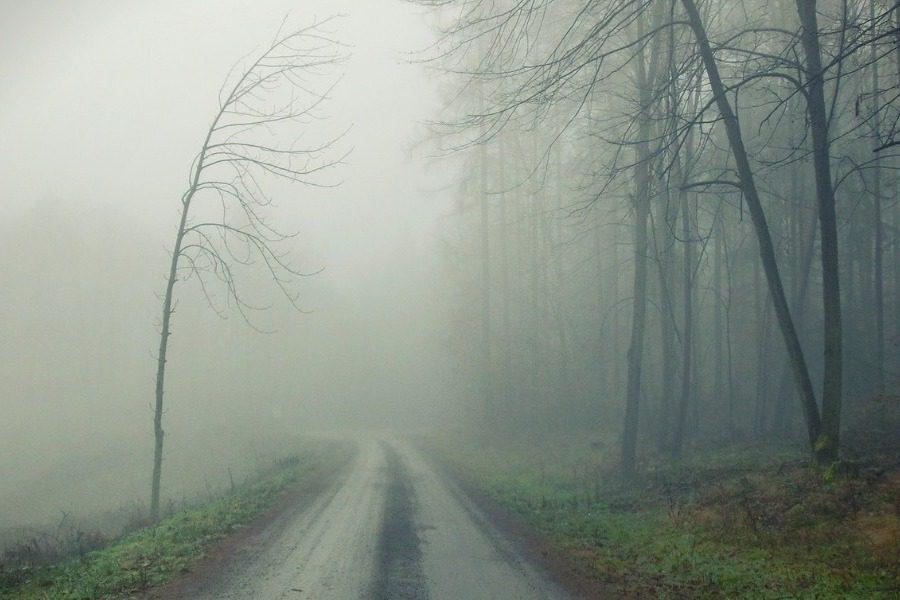 Το αυτοκίνητο ‑ φάντασμα που οδήγησε σε μια αλλόκοτη ανακάλυψη