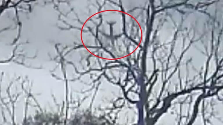 Βίντεο σοκ: Η «βουτιά» αεροπλάνου λίγο πριν από τη συντριβή στο Τέξας