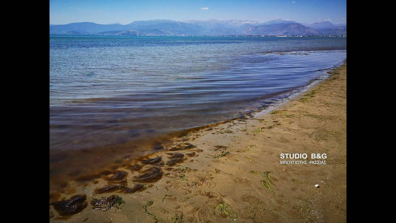 Κοκκίνισε η θάλασσα στο Ναύπλιο – Τι προκάλεσε το φαινόμενο που προβλημάτισε τους κατοίκους