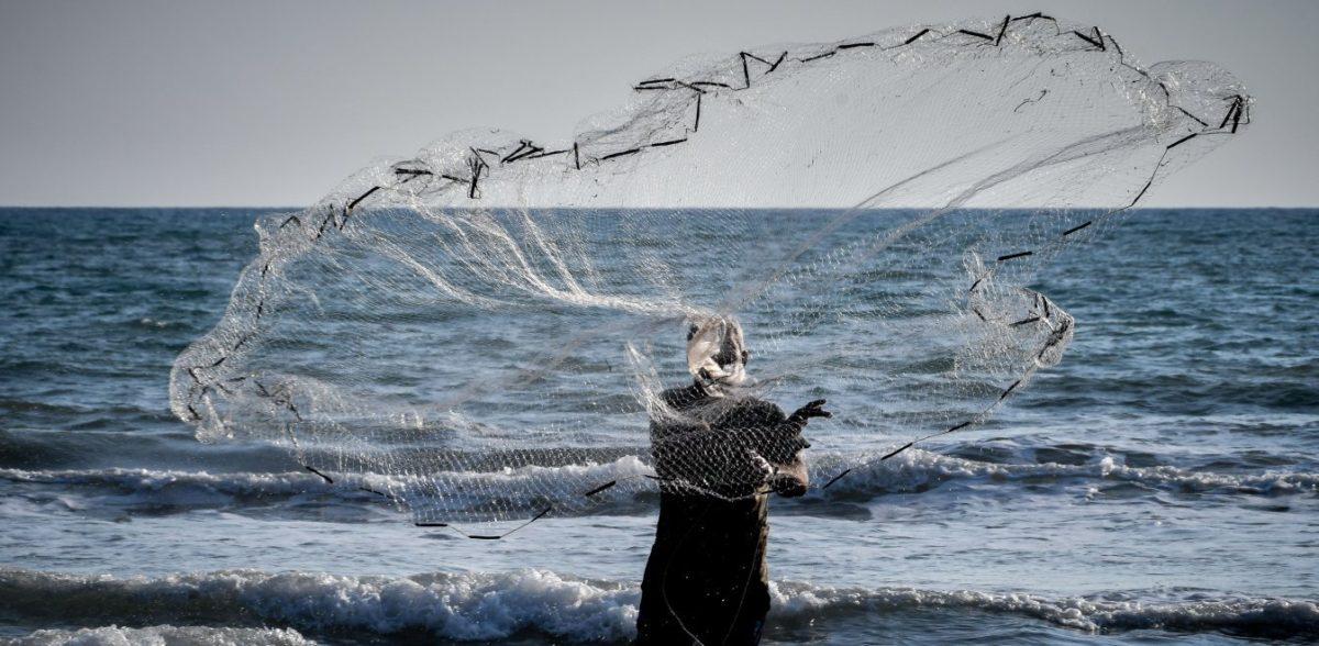 Συναγερμός στο Αιγαίο: Ψάρια-δολοφόνοι στα ελληνικά νερά
