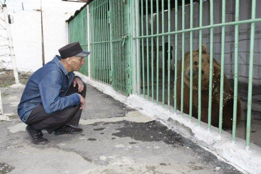 Για ποιον λόγο στο Καζακστάν έχουν φυλακίσει ισόβια… μια αρκούδα