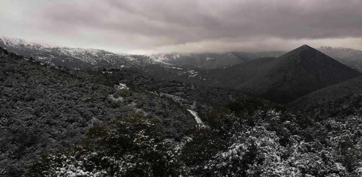 Ο καιρός τρελάθηκε: Πυκνή χιονόπτωση στη Φλώρινα