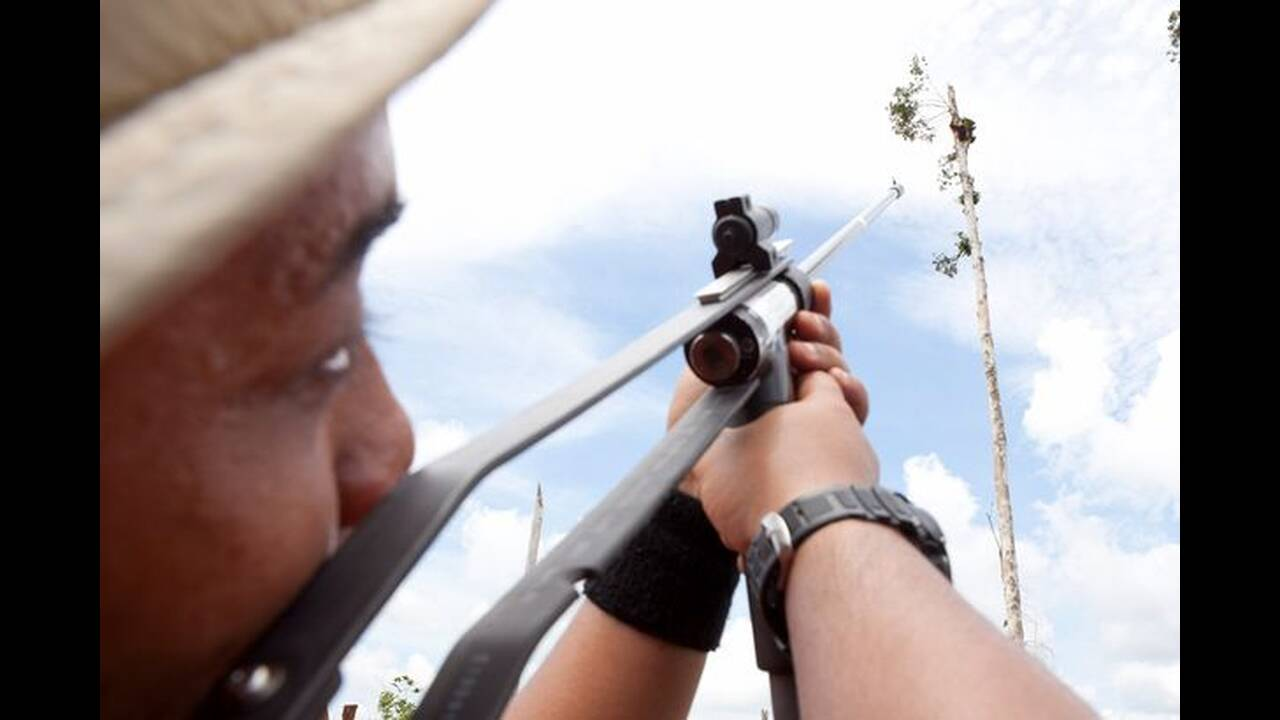 Σπαρακτικό: Ουρακοτάγκος παγιδεύεται στο τελευταίο δέντρο ενώ μπουλντόζες ισοπεδώνουν το δάσος του
