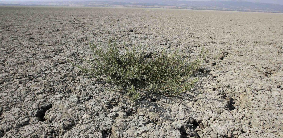 Ποιες περιοχές της Ελλάδας παρουσιάζουν υψηλό κίνδυνο ερημοποίησης