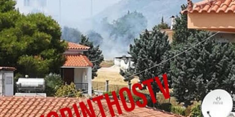 Μεγάλη πυρκαγιά στα Ισθμια Κορινθίας: Απειλούνται σπίτια στην Κυρά Βρύση [βίντεο]