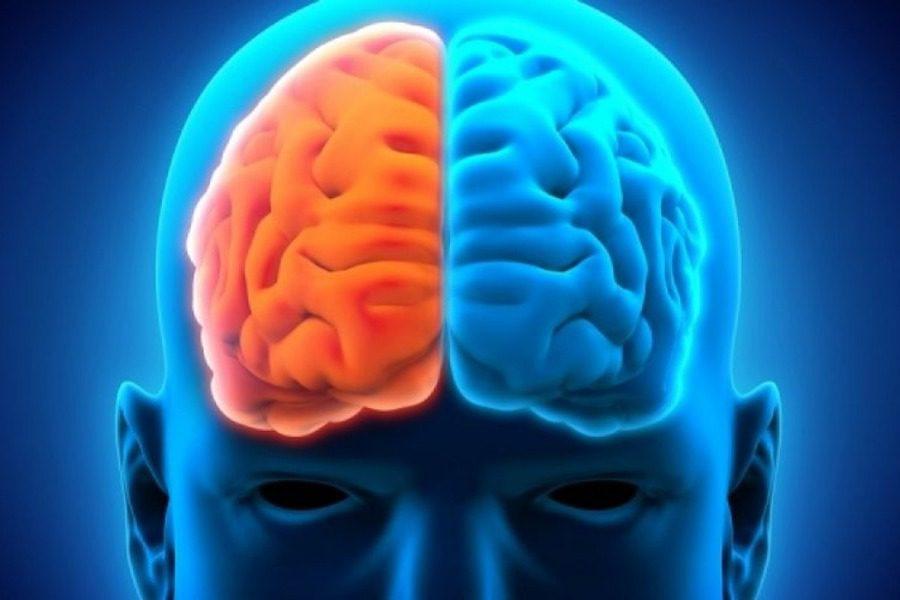 Πράγματα για τον εγκέφαλο που δεν γνωρίζεις