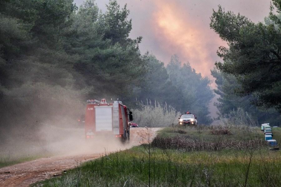Φωτιά στον Κιθαιρώνα: Ενισχύθηκαν οι πυροσβεστικές δυνάμεις