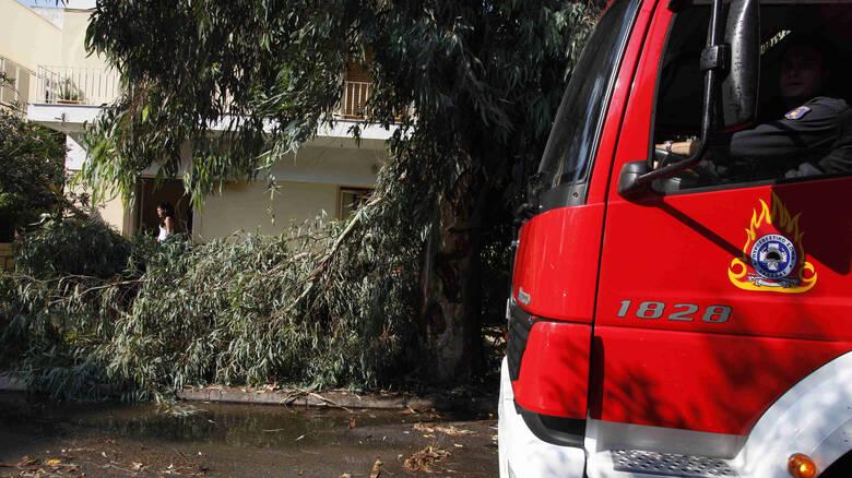 Προβλήματα από την κακοκαιρία στη Βόρεια Ελλάδα – Χωρίς ρεύμα οικισμοί στη Χαλκιδική