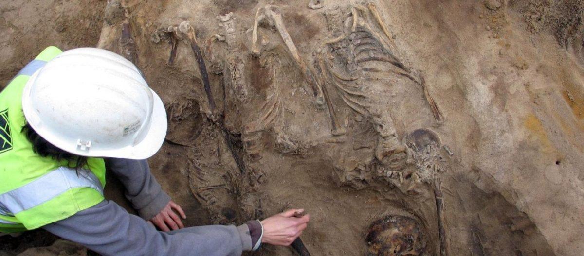 Η «καυτή» αρχαιολόγος με το εφαρμοστό μπλουζάκι… Για βραβείο Νόμπελ! (βίντεο)