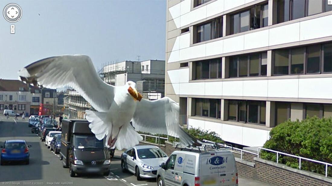 Στο Google Maps περιμένουν απίθανα πράγματα για να τα ανακαλύψεις