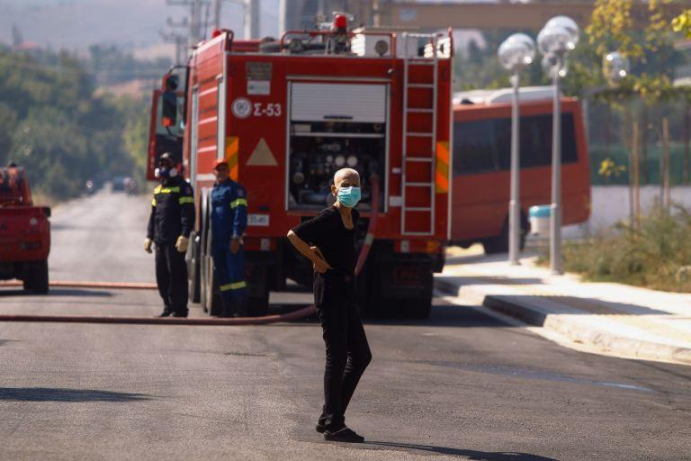Πυρκαγιά στη Σιθωνία Χαλκιδικής
