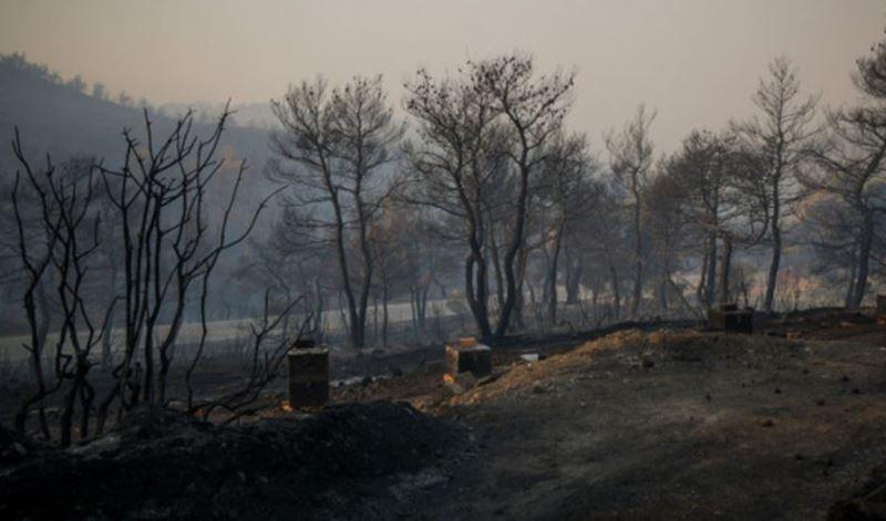 Κρανίου τόπος η Κεντρική Εύβοια- Μάχη της Πυροσβεστικής στα περιφερειακά μέτωπα