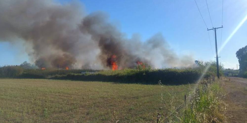 Σε πλήρη ετοιμότητα για εκδήλωση πυρκαγιών την Κυριακή – Απαγόρευση κυκλοφορίας στα δάση