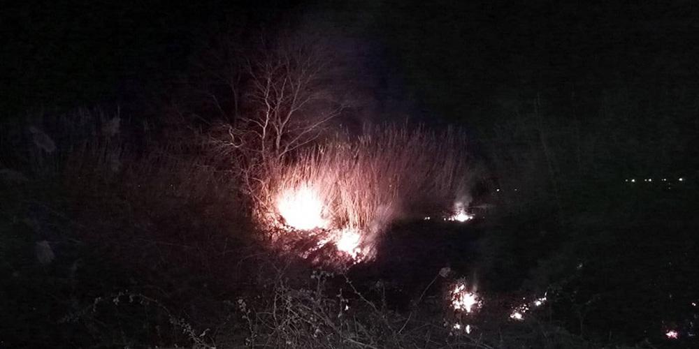 Δασική πυρκαγιά στην Παυλιάδα Αμφιλοχίας