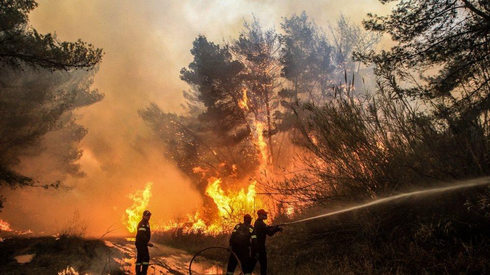 Φωτιά στις Ερυθρές Αττικής: Καίει δάσος στον Κιθαιρώνα