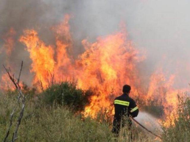 Συνεχείς αναζωπυρώσεις στα μέτωπα της φωτιά στην Εύβοια