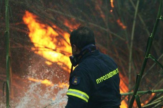 Κρήτη: Συναγερμός για φωτιά κοντά σε κατοικημένη περιοχή | ΦΩΤΟ
