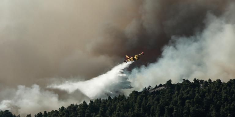 Πυροσβεστική για τη φωτιά στην Εύβοια: Υπάρχουν σαφείς ενδείξεις εμπρησμού