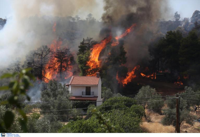 Φωτιά: Αυτό είναι το προφίλ του εμπρηστή στην Ελλάδα! Στοιχεία σοκ!