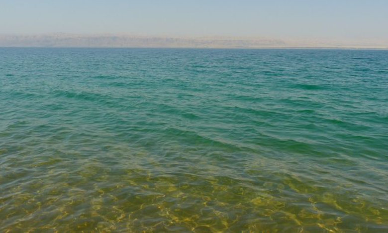 Κοπέλα κολυμπάει στη Νεκρά θάλασσα – Δείτε τι απίθανο της συνέβη