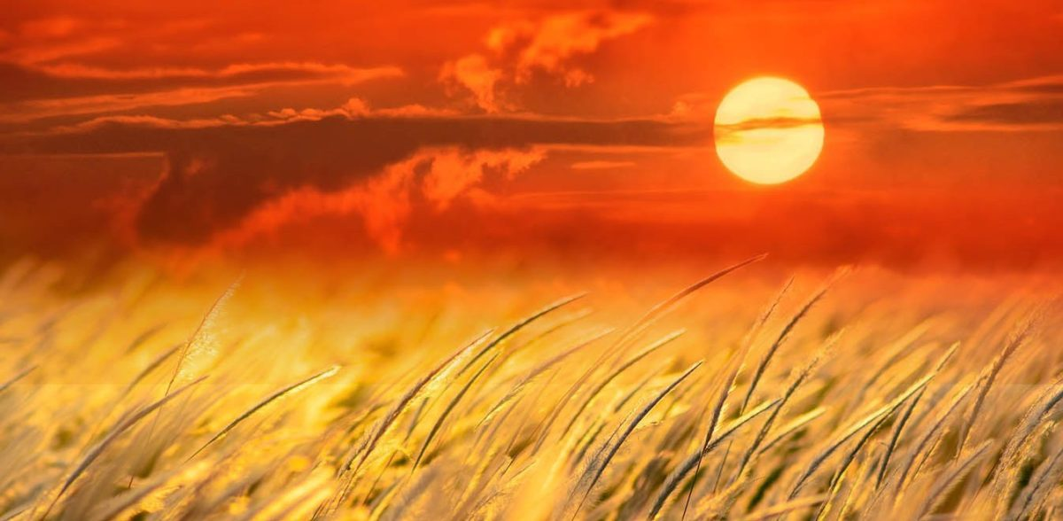 Καιρός: Άνοδος της θερμοκρασίας – Τα 100χλμ. έφτασε το μελτέμι