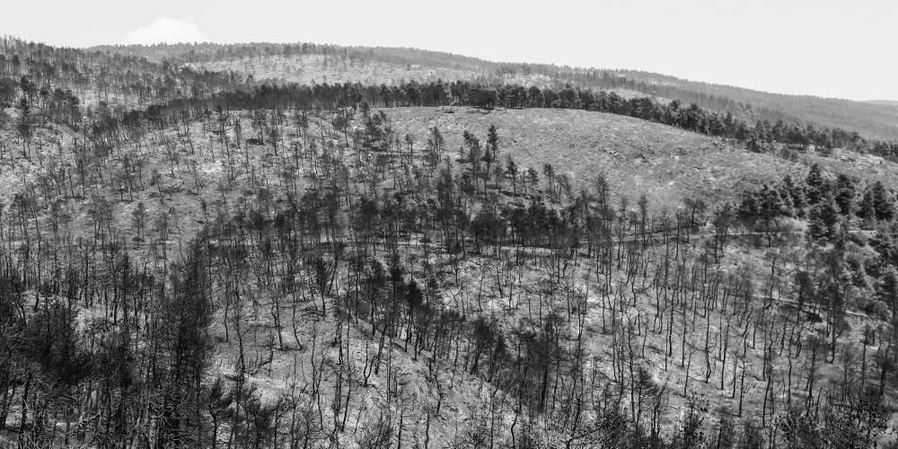Τεράστια οικολογική καταστροφή στην Εύβοια: Όλες οι καμένες εκτάσεις από δορυφόρο