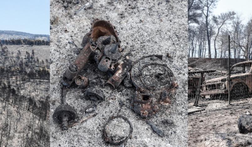 Ευρήματα εμπρησμού στη φωτιά στην Εύβοια: Εντόπισαν στουπιά, μπιτόνια, εύφλεκτο υγρό και γκαζάκια