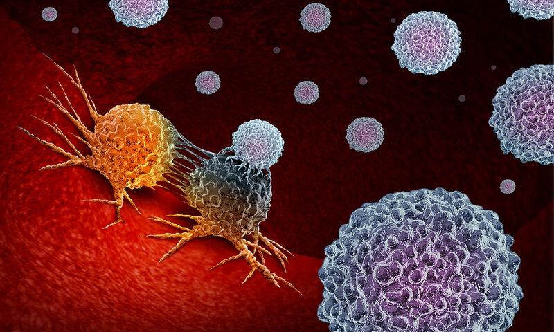 5 τροφές που εξοντώνουν τα καρκινικά κύτταρα (εικόνες)
