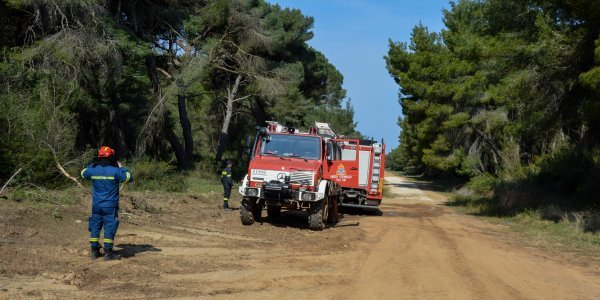 Με 25 φωτιές ήρθε αντιμέτωπη η Πυροσβεστική την Παρασκευή (vid)