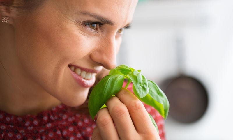 Τα 10 καλύτερα βότανα για να ρίξετε την πίεση (εικόνες)