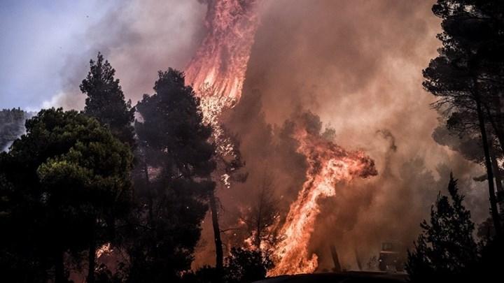 Σοκάρουν τα στοιχεία για τις πυρκαγιές στη χώρα μας: Κάηκε έκταση πρασίνου ίση με τη Σαλαμίνα ή τη Σκόπελο