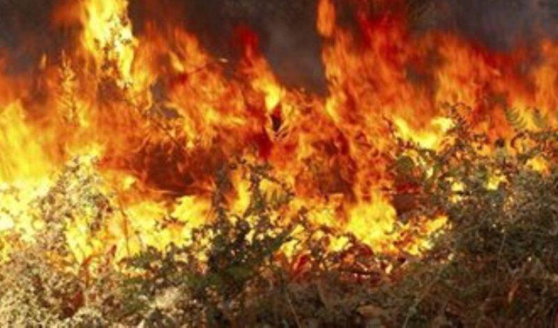 Πυρκαγιά τώρα στο Ρέθυμνο κοντά στο χωριό Μέλαμπες