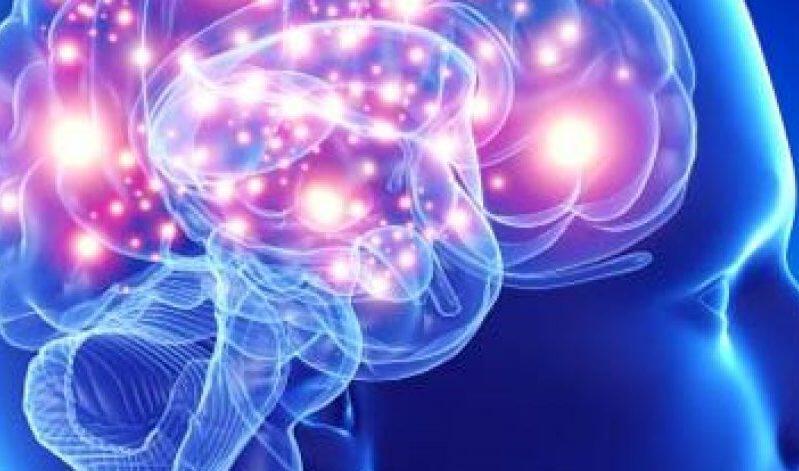 Ο περιορισμός της εγκεφαλικής κυτταρικής δραστηριότητας ενδέχεται να αυξάνει το προσδόκιμο ζωής