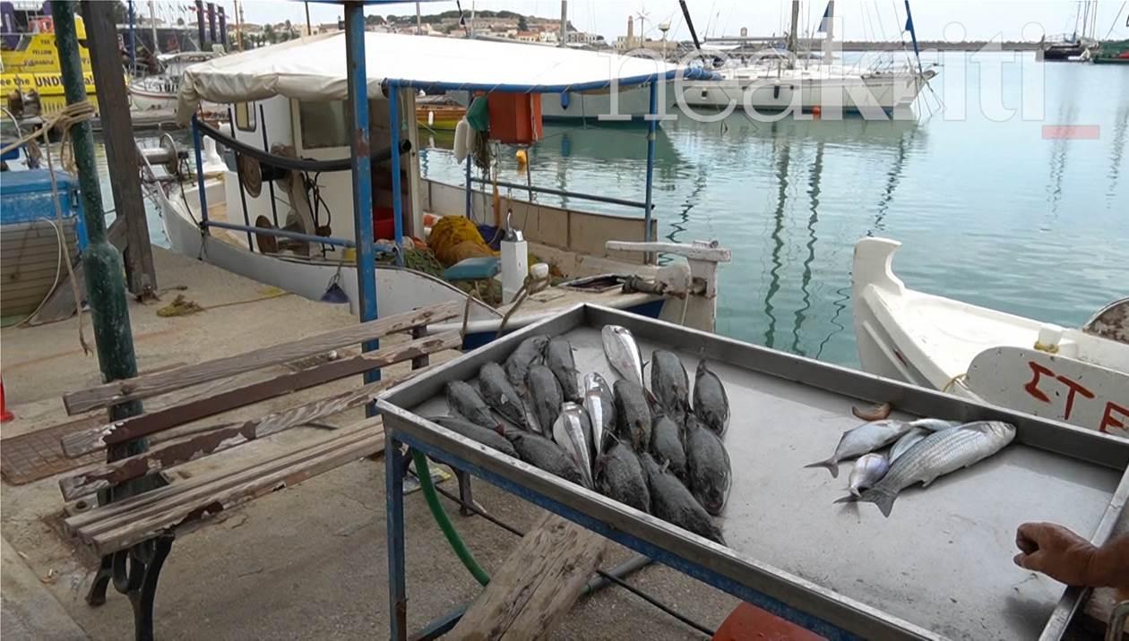 Σοκ για ψαρά στο Ρέθυμνο: Περίπου 50 λαγοκέφαλοι στα δίχτυα του