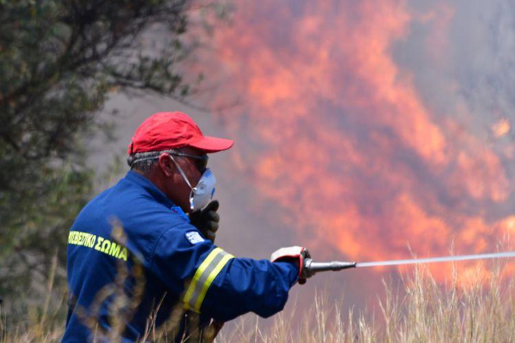 Μεγάλη φωτιά στην Αρκαδία -Ισχυρές δυνάμεις της Πυροσβεστικής